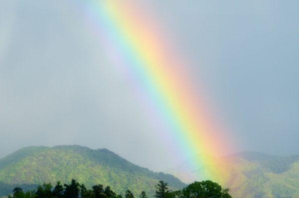 可視光線 虹