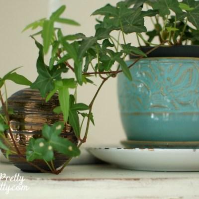 Winter Decorating Ideas: Let it Grow!