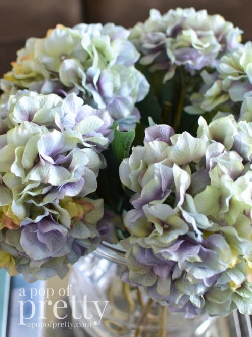 spring hydrangeas
