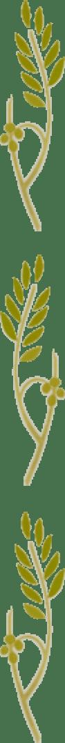 Coleção Oliveira Ramo Oliveira 3 | Apostolado Litúrgico Brasil