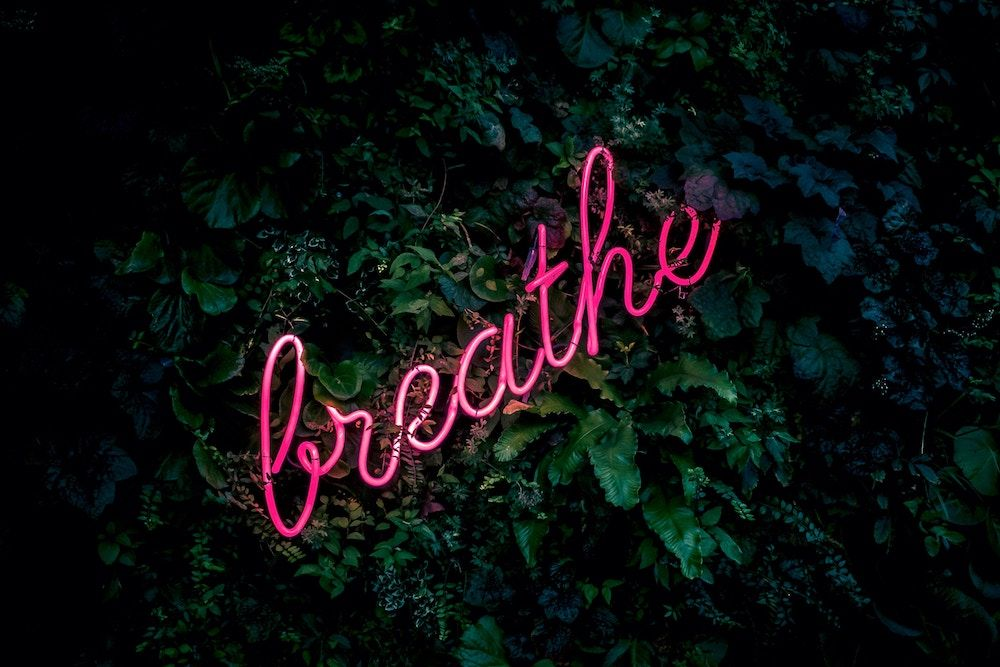 "A neon pink ""breathe"" sign against a leafy green background"
