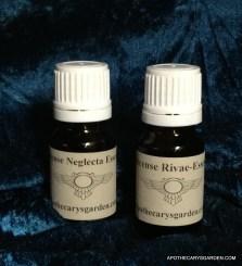 Essential Oils of Boswellia-Frankincense Rivae and Neglecta