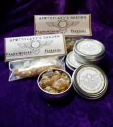 Fresh Fairtrade Frankincense Frereana, Natural Chewing Gum, Incense and Medicine.