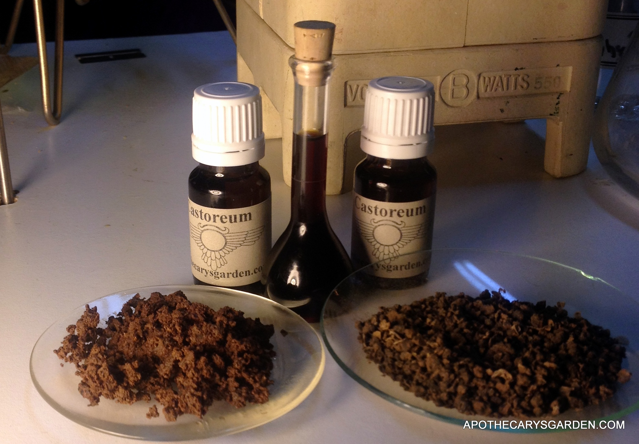 Castoreum, tincture of Castor, dried granules on the right, ground and preserved in alcohol on the left.