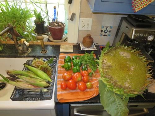 Harvest on the Equinox