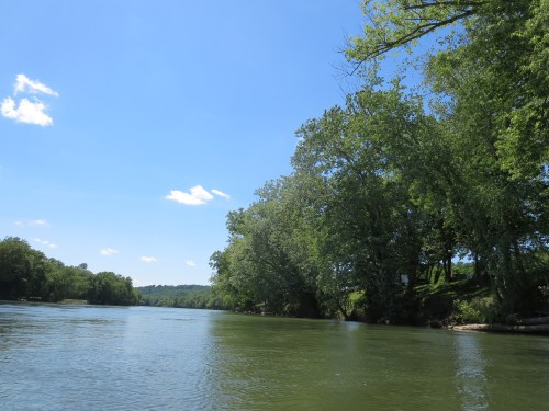 The Shenandoah River between Watermellon Park and Route 7