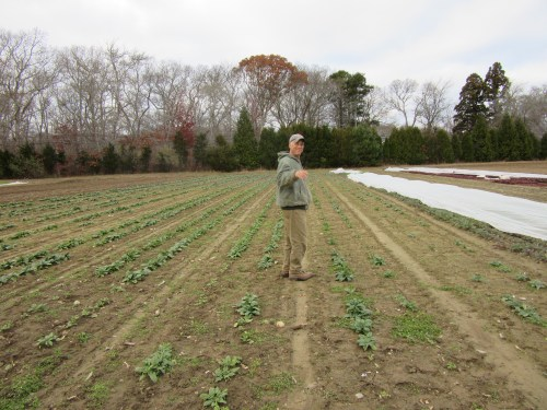 Farmer Craig, aka Mr Okra aka Dr Feelgood