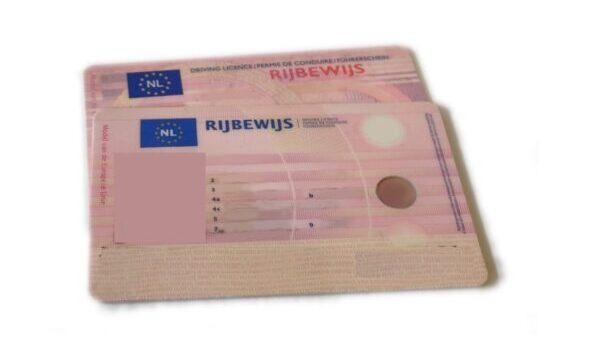 Rijbewijs SAE