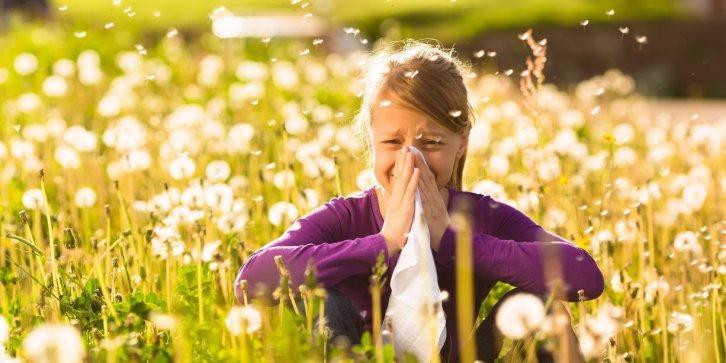 Hooikoorts (pollinosis)