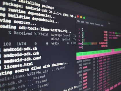 Cleaning linux servers via terminal to free space