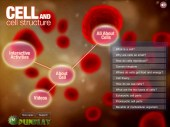 cell_and_cell_structure_08