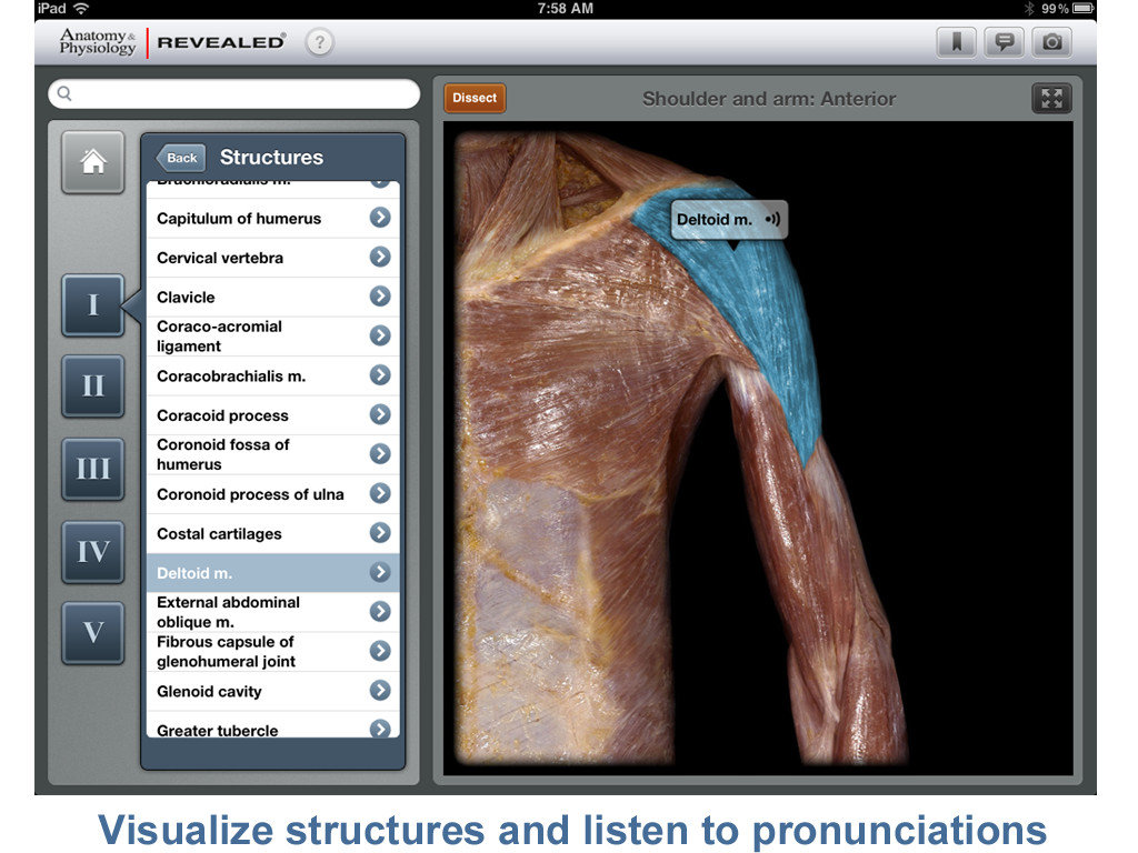 Mcgraw Hills Anatomy Physiology Revealed Is Both An Attractive