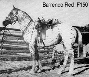 barrendoredf150