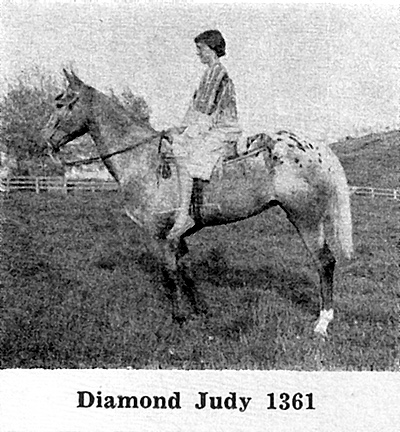 diamondjudyf1361