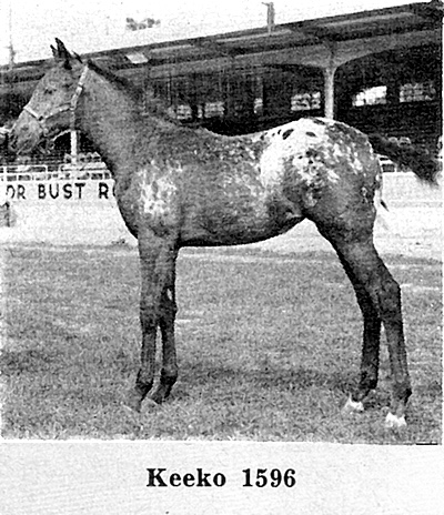 keekof1596