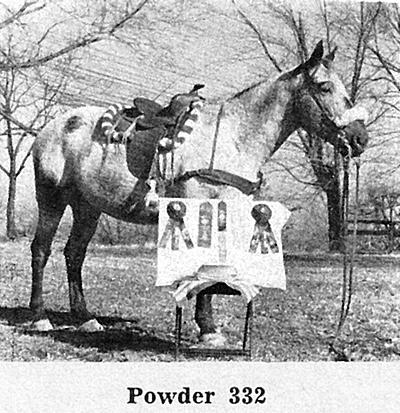 powderf332