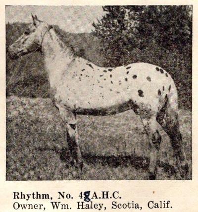 rhythmf48