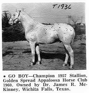 goboy1936c
