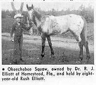 okeechobeesquawt322