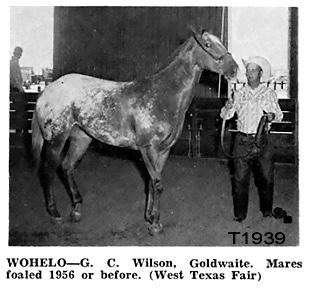 wohelot1939b