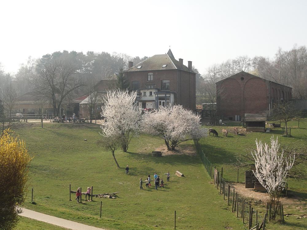 Logement-Appartement-Louvain-la-Neuve (3 sur 20)