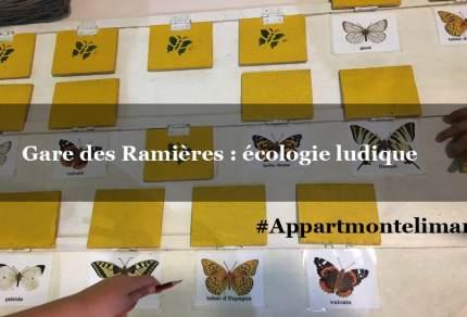 memory papillons drome appart montelimar