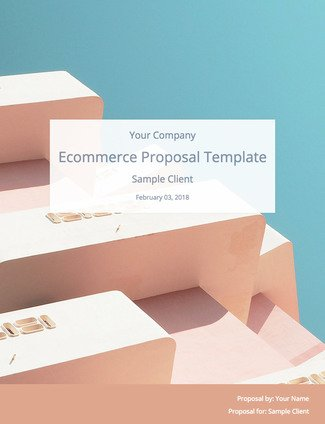 E Commerce Proposal Template Free Download Bidsketch