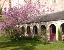 Cloisters in the Spring