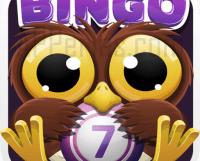 BINGO CRACK, el más divertido juego de bingo ONLINE, se actualiza