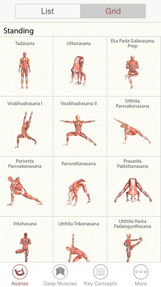 3d yoga anatomy 1