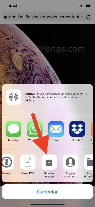 Guarda la imagen en tu iPhone