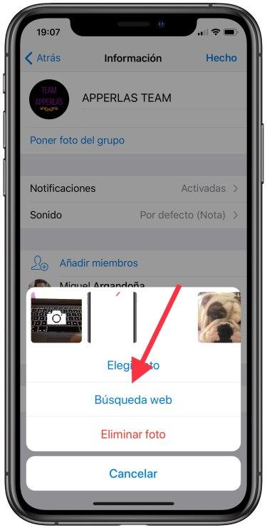 buscar imágenes en Telegram 2