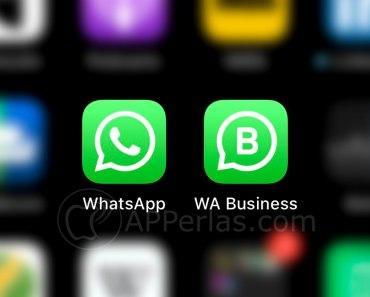 Cómo cambiar automáticamente el fondo de WhatsApp en modo oscuro