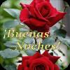 Buenas Noches con Flores