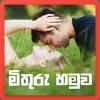 Mithuru Hamuwa - Sri Lankan Date