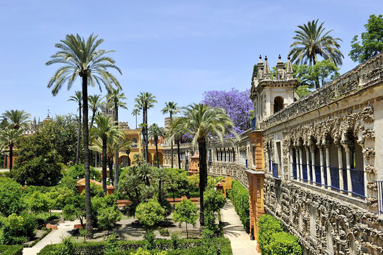 Sevilla Dorne