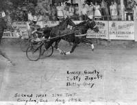 Harness racing at Harrison County Fairgrounds
