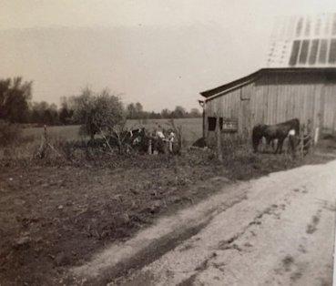 Barn in Corydon where horses were boarded (Mrs. Ashton's)