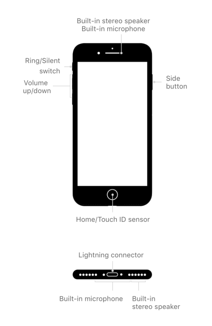 iPhone 7: External Buttons and Connections