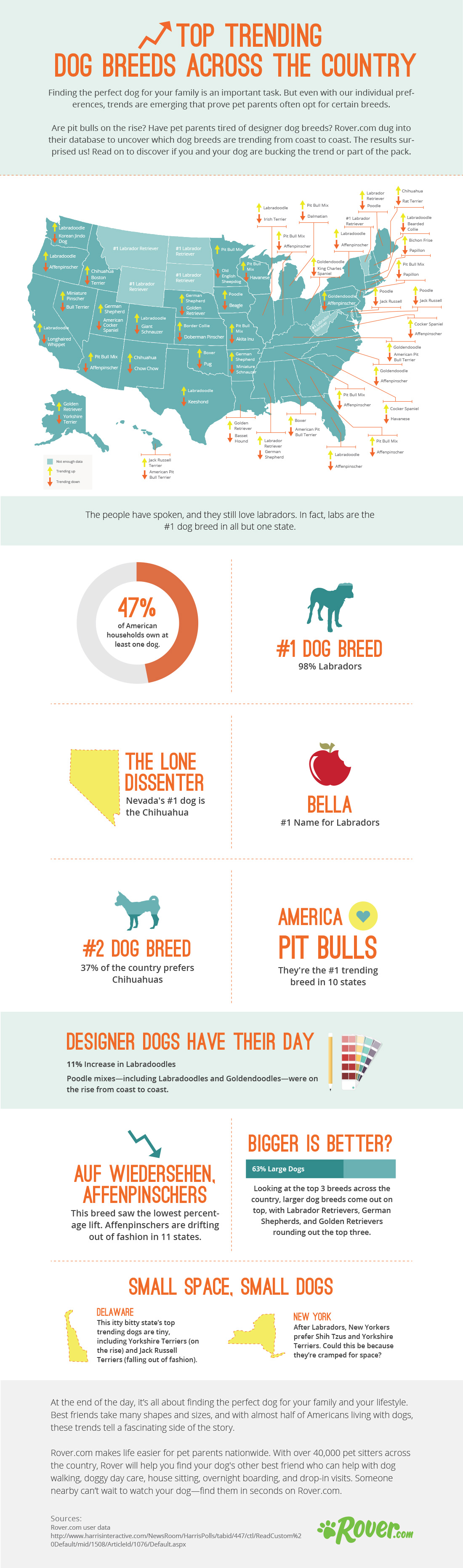 Top-Trending-Dog-Breeds-by-State-Infographic-2