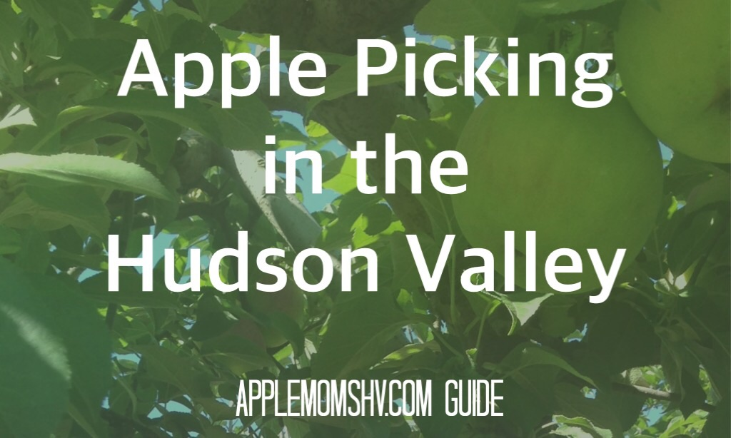 Apple Picking Hudson Valley