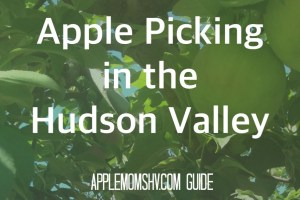 Hudson Valley Apple Picking Locations