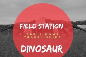 Travel: Field Station Dinosaur