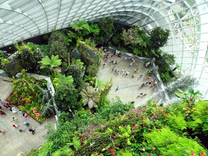 cloud forest singapur travelguide
