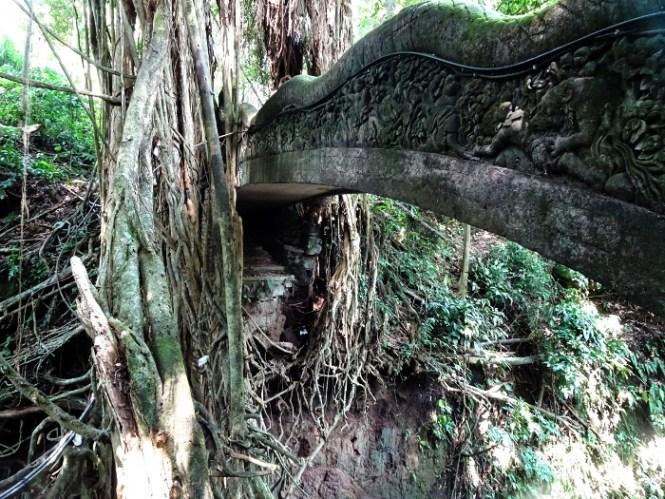 ubud monkey forest eat pray love