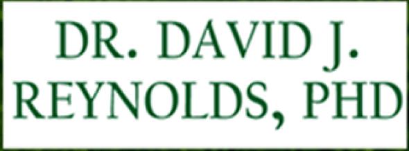 Dave Reynolds Logo