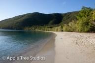 Apple Tree Studios Sail Mag11