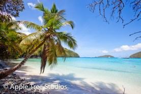 Apple Tree Studios Sail Mag42