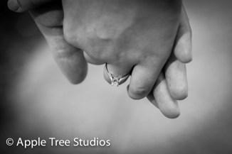Apple Tree Studios-10