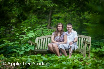Apple Tree Studios-3